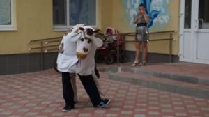 корова танцует-min